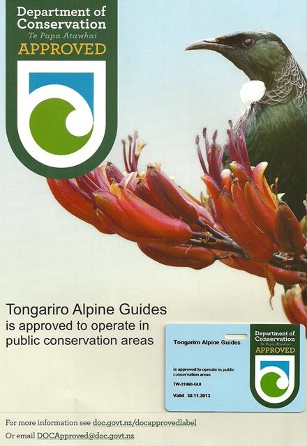 Tongariro Alpine Guides Sarah Cate Web size