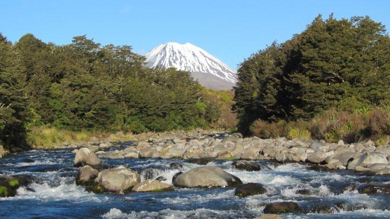 Tongariro -Trout Fishing